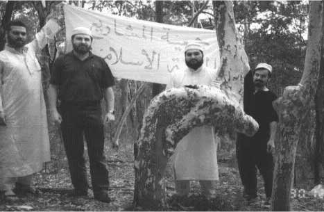 Le Miracle de l'arbre découvert dans une foret d'Australie ...!!