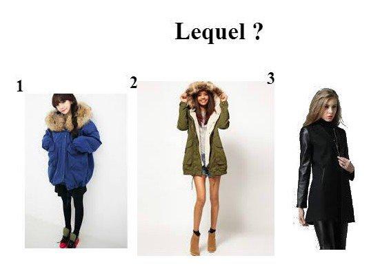 manteaux d'hiver lequel ? :)