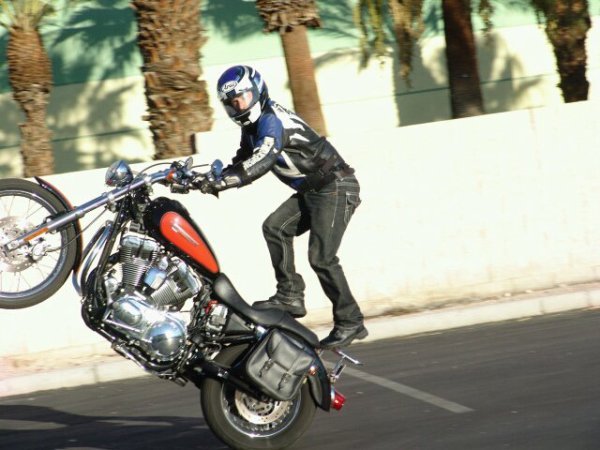 pure fun harley stunt