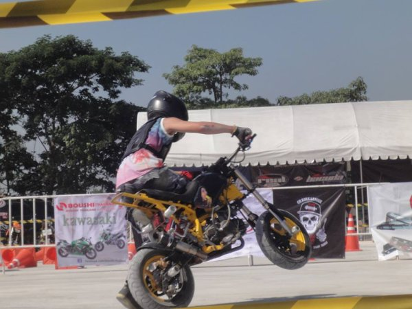 stuntking 2014