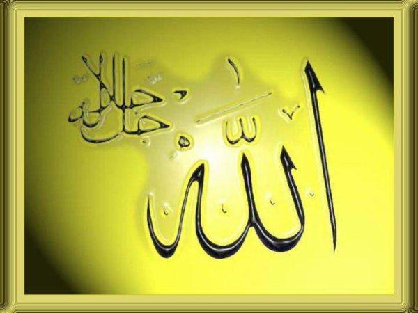Mais c'est Allah votre Maître. Il est le meilleur des secoureurs. (Sourate al-Imran, 150)