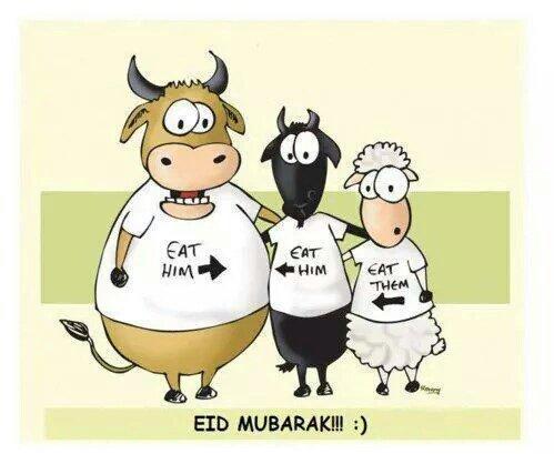 Allah : préféré conserver le mot arabe désignant « Dieu l'Unique » car c'est ainsi qu'il est désigné dans le Coran.  Islam : étymologiquement, ce mot veut dire soumission totale à Allah, ce vocable désigne aussi l'engagement du fidèle à observer les enseignements coraniques et prophétiques.