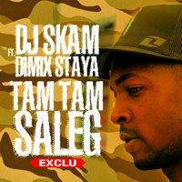 www.djskam.fr / DJ SKAM ft. DIMIX STAYA - Tam Tam Saleg (2012)