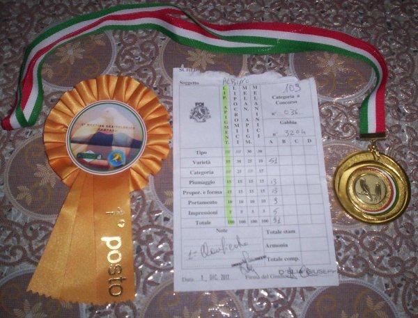 SCHEDA ALBINO N.109-2011