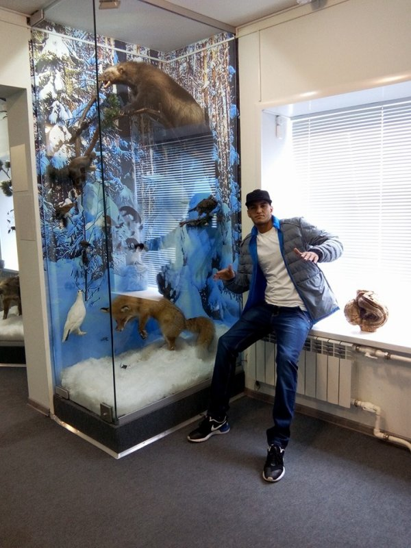 Musée Animal de Russia