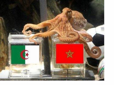 wach basa7 lmagrib gadi taglab algeria