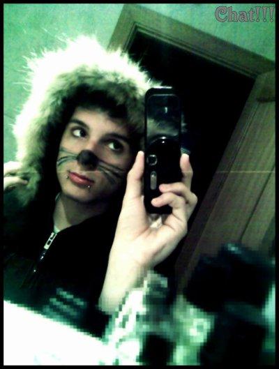 Un petit chaton <3 !!!