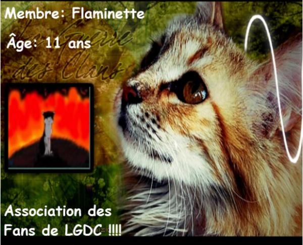 Préz' de Flaminette :3