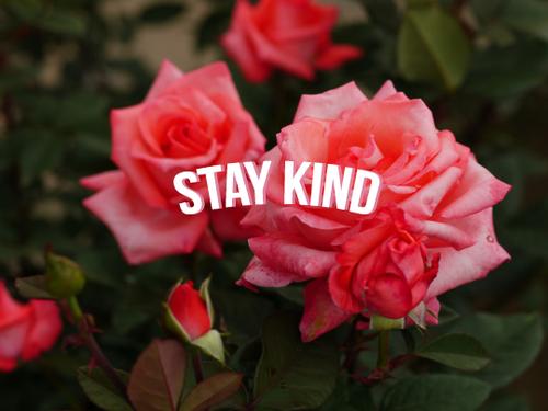 La gentillesse