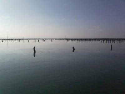 Pour nous le paradis... pour la pêche en surface.
