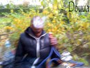 Daloxx Bdg Wood's