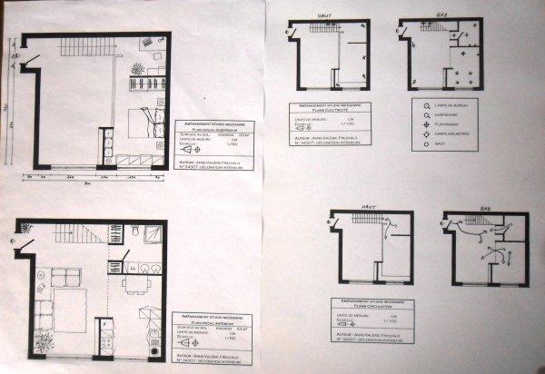 Studio 53 m² - plan des 2 niveaux et plans circulation, électricité