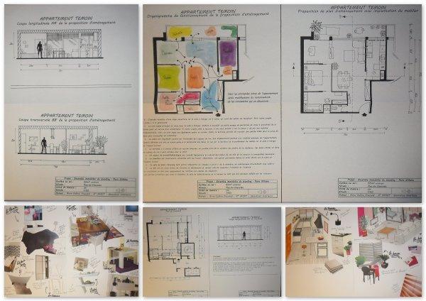 Projet Pro I - Appartement témoin