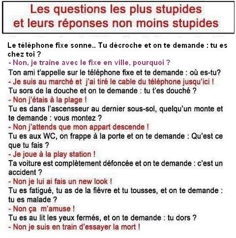 Les questions les plus stupides