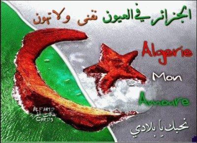 8-p  l'algerie Mon Bled Nmout 3liiiiiiiiiiiikkkkk   8-p