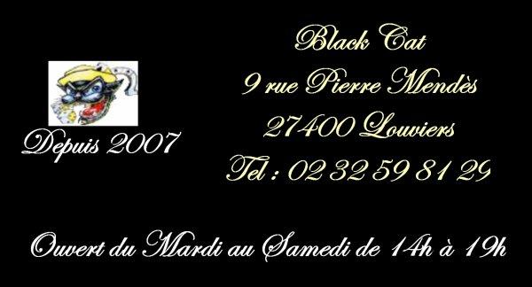 Black Cat (27)