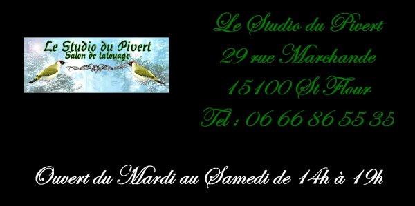 (attente de confirmation) Le Studio du Pivert (15)