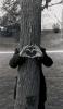 l'amour rend fou