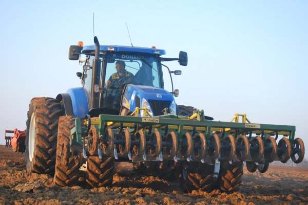 Appret chicorées new holland t7040