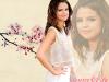 Blog Source sur Selena Gomez