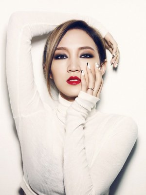 Miss-A Membre