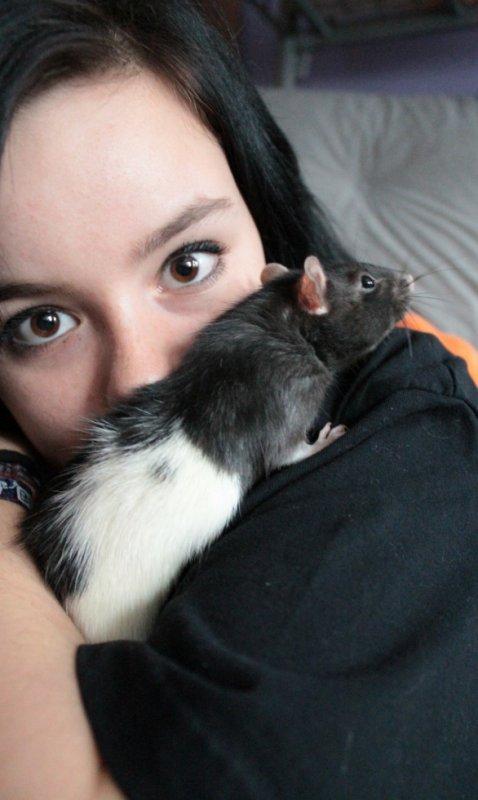 my little rat <3