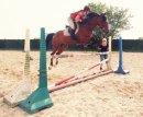 Photo de moi-et-les-chevauxdu76