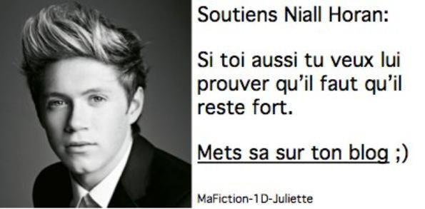 SOUTIEN POUR MON NIALLOU !!!