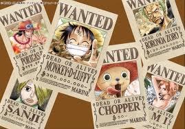 Projet One Piece