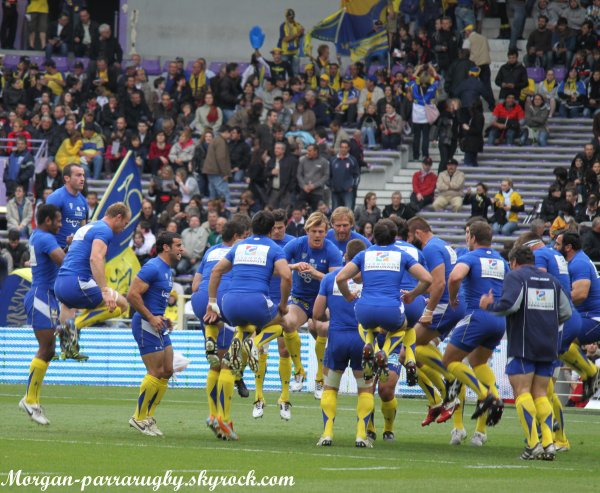 TOP 14: ASM-TOULOUSE, 26e journée photos