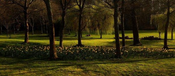 Parc du château des Ravalets. Mars 2012.