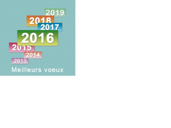 MEILLEURS VOEUX A TOUS POUR CETTE NOUVELLE ANNEE 2016