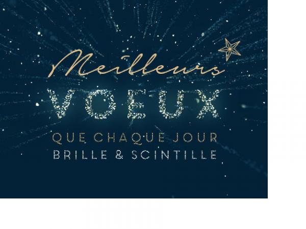 MEILLEURS VOEUX POUR CETTE NOUVELLE ANNEE 2017