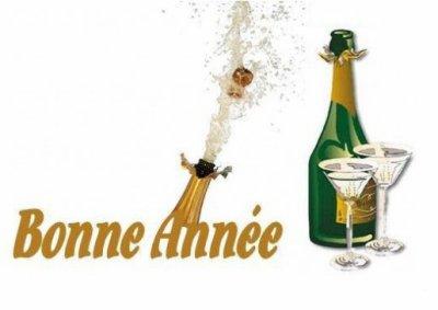 *** BONNE ANNEE 2009 ***