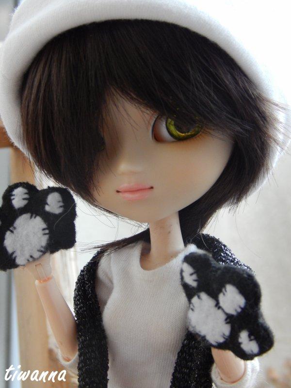 Clara, le petit nyan-cat bicolore ♥