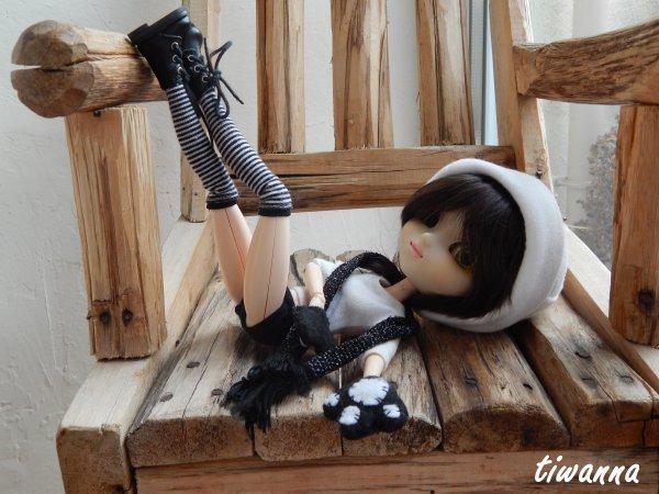 Clara, le petit nyan-cat bicolore ♥ suite !