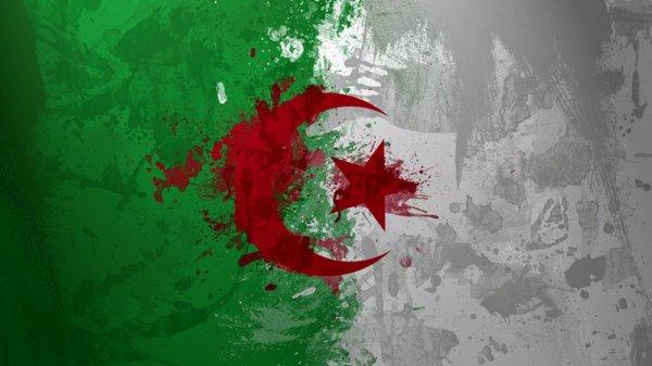 1.2.3 vive algeria