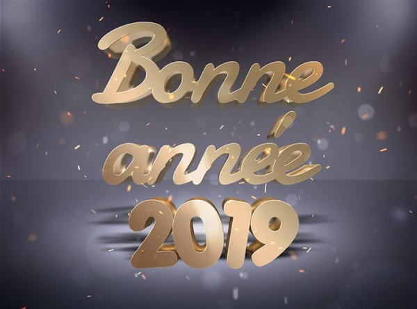 Bonne année 2019 à tous