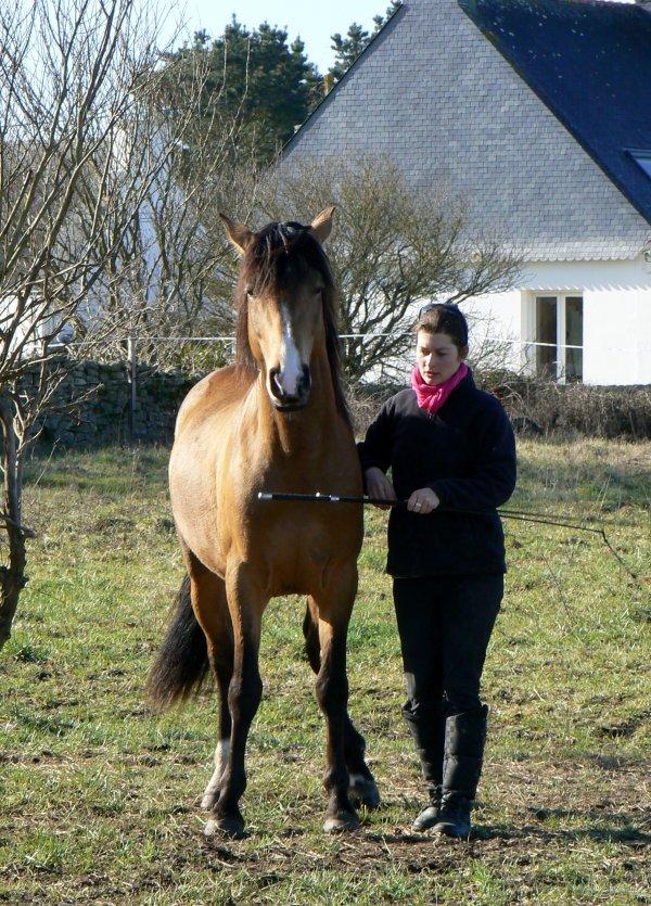 Notre merveilleux week end breton chez Audrey et Pauline!!!!!