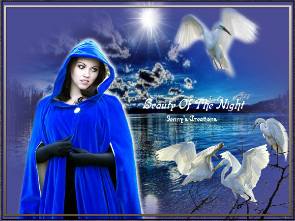 Beauty Of The Night - Jenny's Creations.