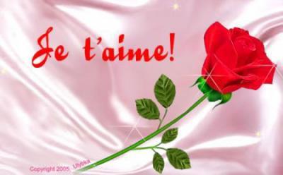 Belle Fleur Rouge Map Titecampagne