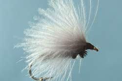 Truite: Séchage des mouches en cul de canard pour pêcher la truite