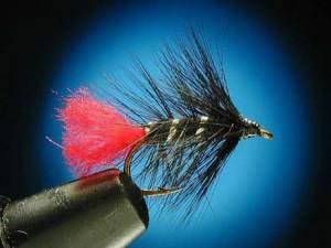 Les mouches: Black Zulu