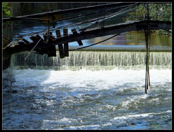 Trucs et astuces : Les meilleures périodes pour pêcher près des barrages.