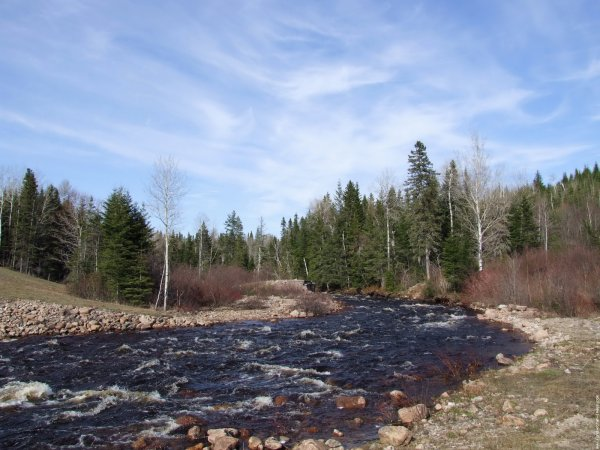 Trucs et astuces : La pêche en rivière rapide.