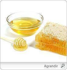 Trucs et astuces : Asticots au miel
