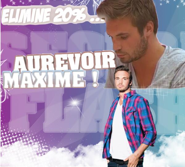♥ S e c r e t - F l a s h ; Aurevoir Maxime :)