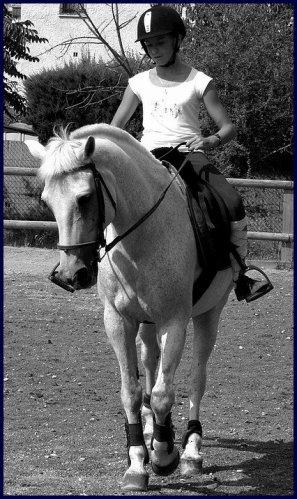 J'ai enfin trouver, Le cheval dont je Rêver .. ♥