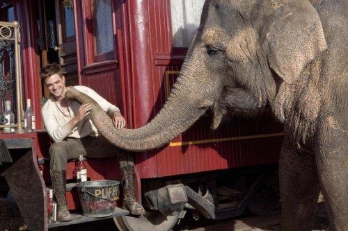 Nouveaux still de Water for Elephant !!