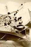 Photo de plume-decriture